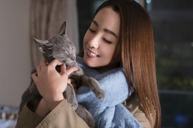 沢尻エリカ、共演猫とラブラブ新生活!映画「猫は抱くもの」