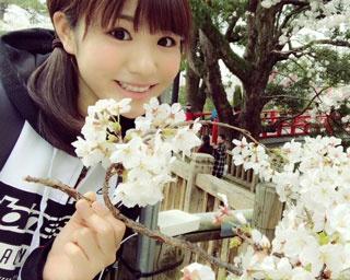 桜以外にも楽しめるポイントがたくさんありますよ♪