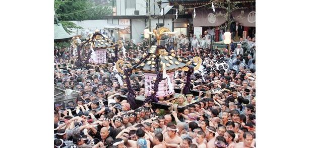 浅草・浅草寺隣にある「浅草神社」の例大祭「三社祭」。毎年150万人が訪れる祭りの主役・神輿に注目が集まるのも、それを守る職人の技があるからこそだ