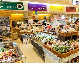 """東京メトロ銀座一丁目駅3番出口より至近。物産品の販売のみならず、文化、観光情報など、高知の魅力を""""まるごと""""発信している"""