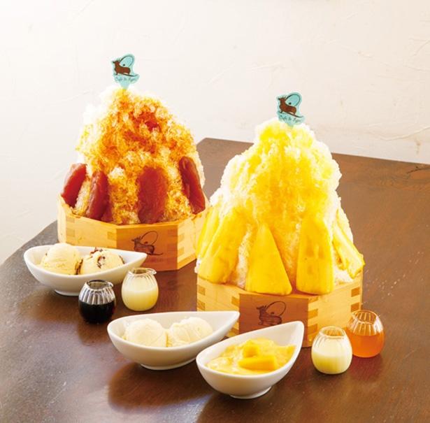 写真左は「タルトタタンラムレーズンのかき氷」(1280円)、右は「完熟空輸マンゴーとパッションフルーツのかき氷 」(1380円)