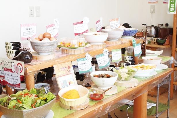 【写真を見る】納豆好き必見!納豆工場併設レストランのブッフェ
