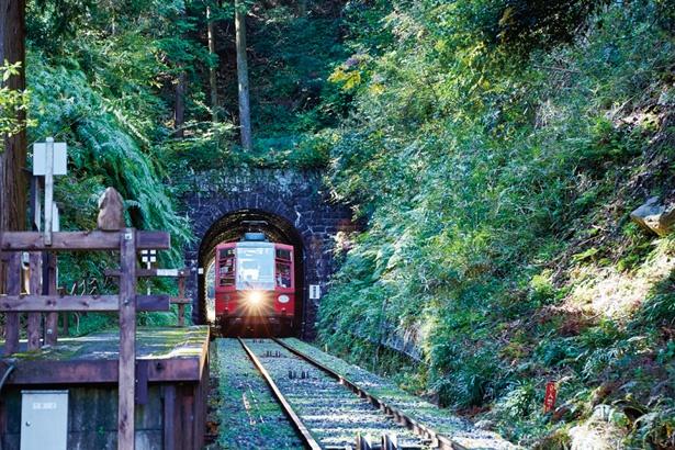 林の中にひっそりたたずむ無人駅「ほうらい丘駅」