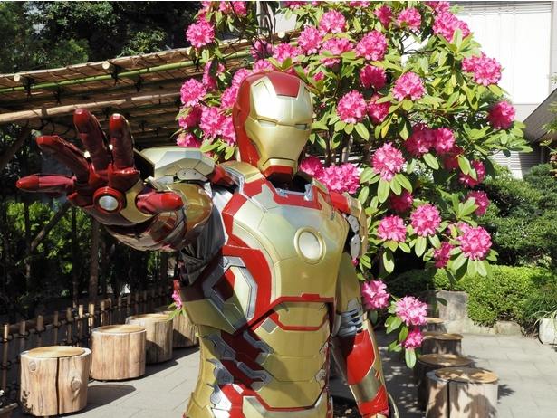 東京大神宮にあのヒーローたちの姿が!
