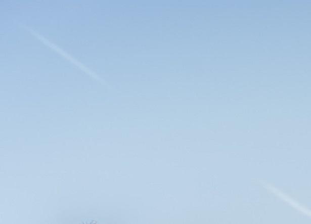 【写真】アラサー男4人の座談会は、雲ひとつない快晴の空の下行われた