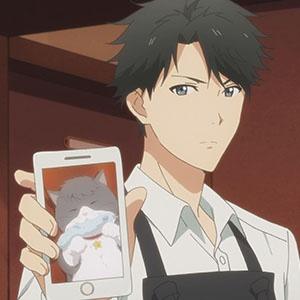「多田くんは恋をしない」第7話の先行カットと予告動画が到着。姿を消したニャンコビッグの行方は?