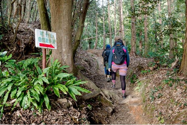<可也山>標高は365mで登山ビギナーでも挑戦しやすく、頂上までは片道およそ50分