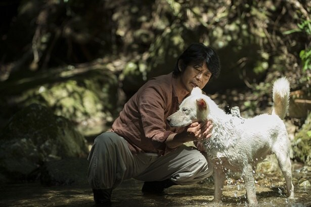 永瀬正敏演じる智は、森の自然を守る山守として猟犬のコウと暮らす