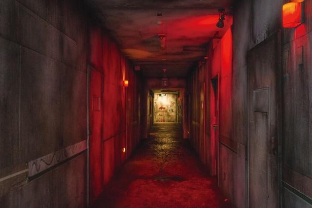 地下道路など900mを進む
