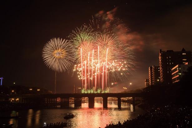 三河伝統の銀滝や 金魚花火、大のしなど、同大会ならではの花火は感動ものの美しさ!
