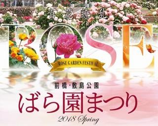 開催期間中、バラ花壇のライトアップ実施