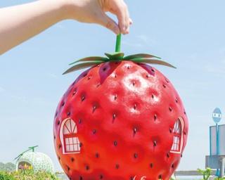 「小長井フルーツバス停通り」のイチゴのバス停。撮影はアイディア勝負。イチゴをつまんで、はいポーズ!