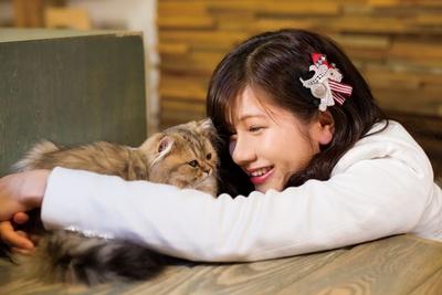 【写真を見る】あいりの推しニャン「アリスちゃん(チンチラゴールデン)」/Cat Of Liberty