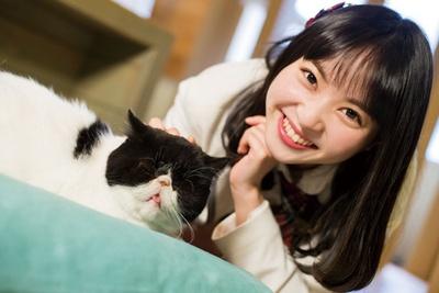 しおんの推しニャン「しゅしゅちゃん(エキゾチックショートヘア)」/Cat Of Liberty