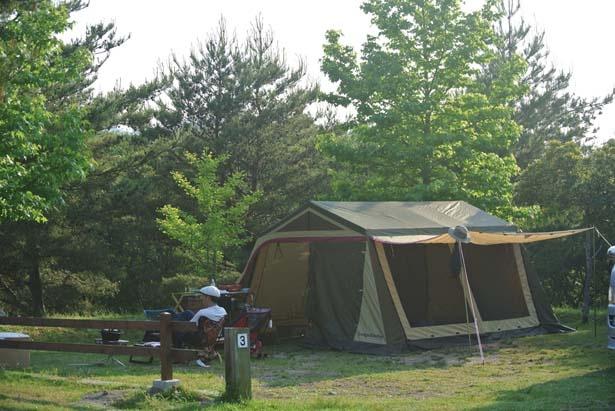 電化製品が使えるため、手軽にキャンプが楽しめるAC電源サイト/グリム冒険の森