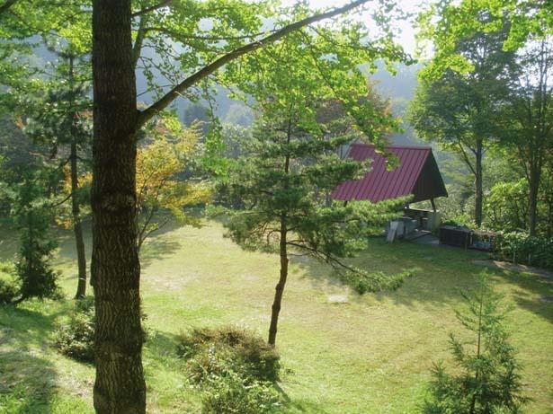 ペットと一緒に宿泊できる/森林公園スイス村