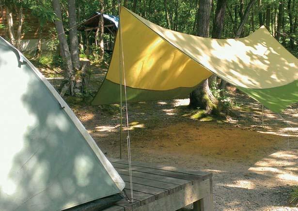 テントはもちろんタープやコンロなど、キャンプに必要な道具をすべてレンタルできる/奥琵琶湖キャンプ場