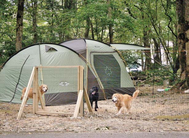 ストレスなしでペットとキャンプを満喫/奥琵琶湖キャンプ場
