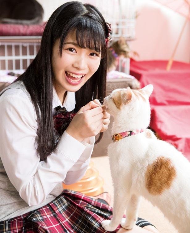 こんなに触れ合えて幸せ~!/保護猫カフェ ねこじま