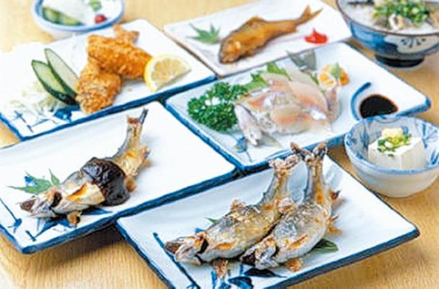 2018年6月23日(土)に食事処がオープン。「松コース」(5000円)は、塩焼き2匹や刺身など、アユ尽くしのコースだ