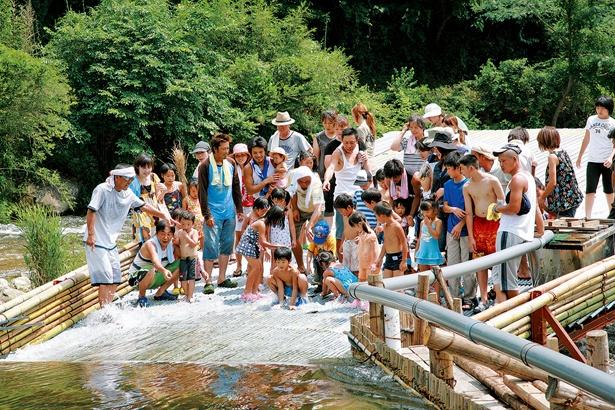 周辺には浅瀬も多く、川遊びも満喫できる
