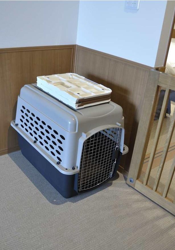客室に用意されたクレート(ケージ)。大型犬の場合は大型のクレートを用意してもらえる