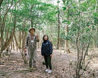 森林セラピー基地豊前 / 森林セラピーでは、散策や深呼吸によって、免疫力の向上やストレスの低下などの効果が見込めるといわれている