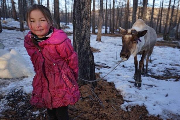 """""""世界最悪の大気汚染""""モンゴルの生活脅かす「ゾド」の謎に迫る"""