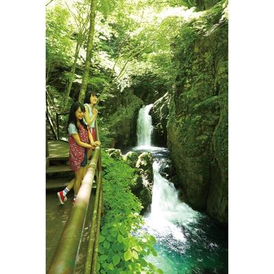 【写真を見る】3段の滝に圧倒される!毎日測定されているマイナスイオンもチェックしよう