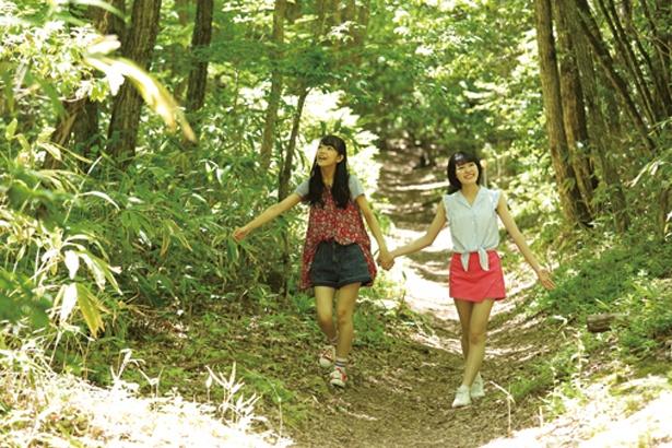 広葉樹に囲まれた「溶岩台地」は腐葉土におおわれているので、フカフカで歩きやすい