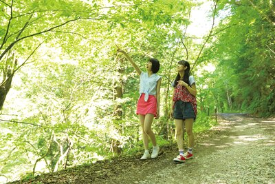 木漏れ日がきれいな「さわら谷」。落石に気を付けながら、谷寄りを歩こう