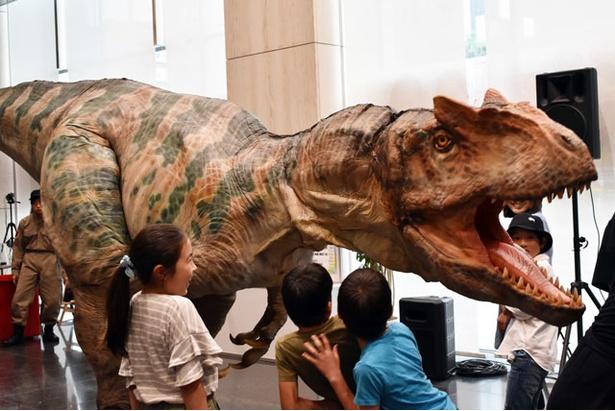 恐竜の迫力に圧倒される