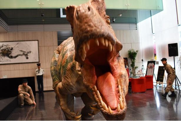 「世界一受けたい授業 THE LIVE 恐竜に会える夏!」のプロモーションで福岡に現れた肉食恐竜のアロサウルス