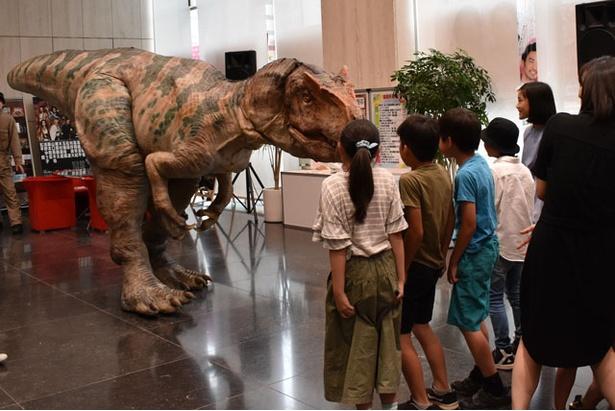 リアルな恐竜にかたまる小学生
