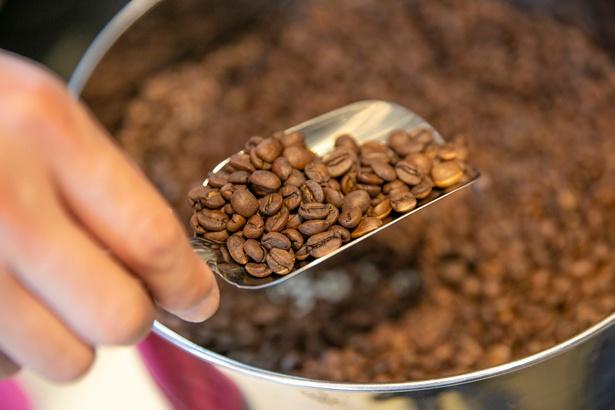 焙煎したてのコーヒー豆。生豆が焙煎されて色が変わっていく過程も見られる