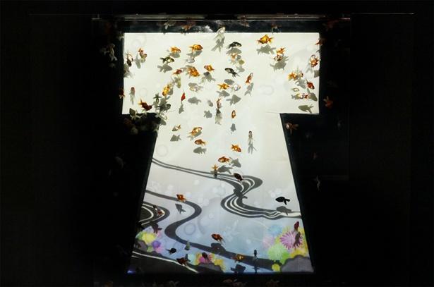 【写真を見る】金魚の泳ぎに合わせて柄が移り変わる「キモノリウム」