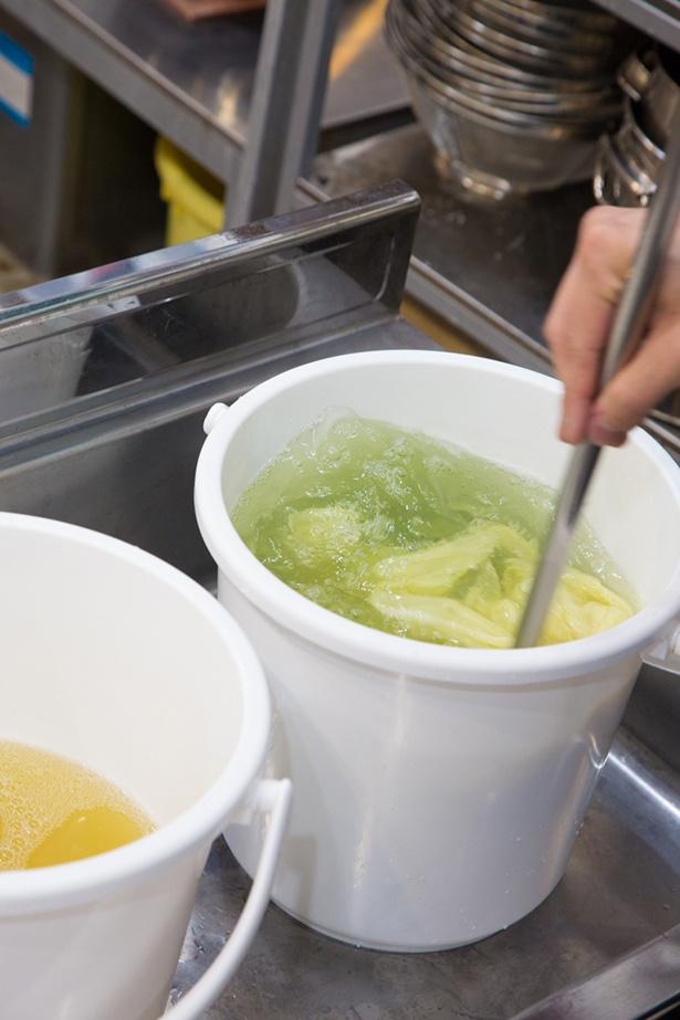 店舗に併設する染色工房では、季節やタイミングによって実際に草木染めの染色作業が見られることも