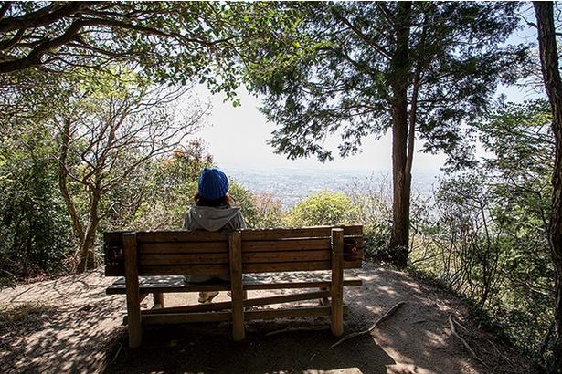 四王寺山 / ベンチでまったり 景色をひとりじめ!