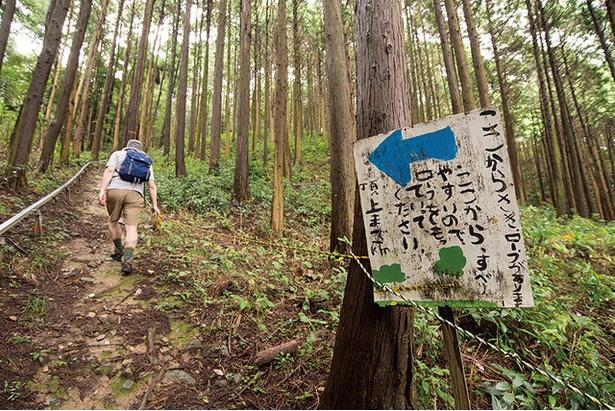 長谷山 / 長谷寺ルートから登った場合の唯一の難所。ロープの斜面では足場が緩く滑りやすいので、ロープをしっかり握り登ろう