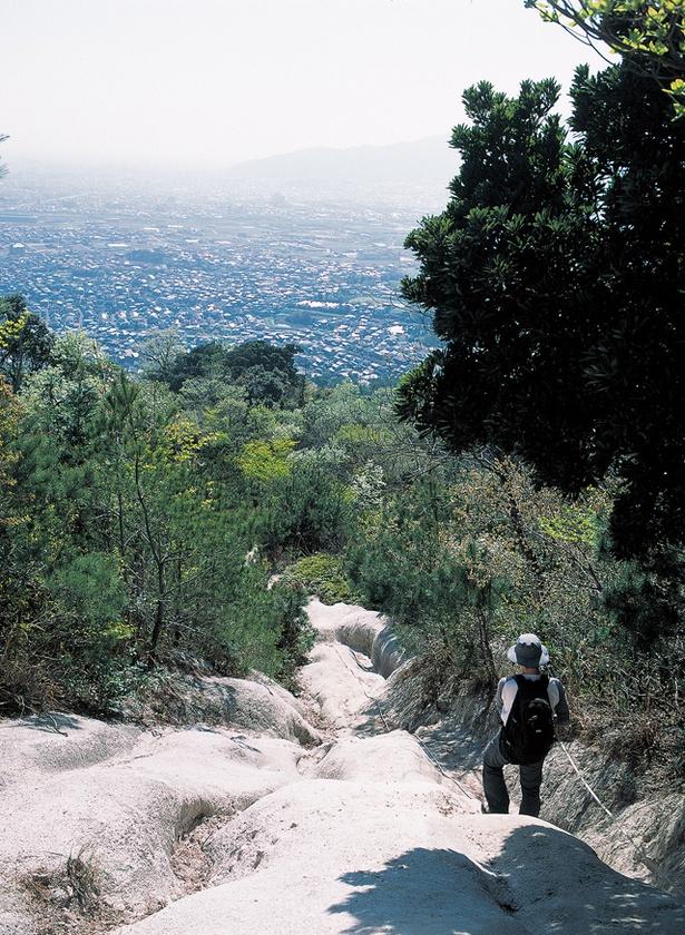叶岳 / 山頂からは眺望がひらけていないので、少し足を延ばして野方台方面へ進む
