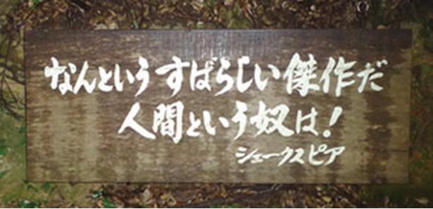 登山道には世界の偉人たちの名言を刻んだ看板がある