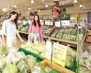 キャベツなど新鮮な野菜がいっぱい。JAの営農指導員が肥料や防除の厳しい点検を行い、クリアした安心安全なものだけが店頭に並ぶ