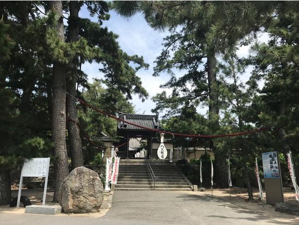 「かぼちゃ寺」と呼ばれる妙善寺