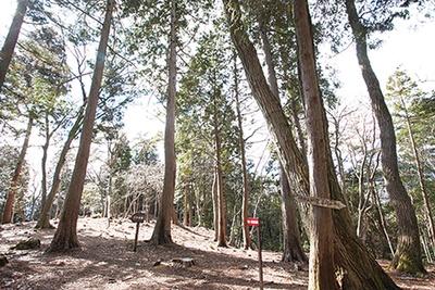 山頂の南西部に位置する三の曲輪。竹中家家臣の屋敷跡とされている