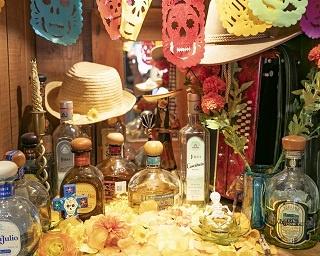 「Mexican Dining AVOCADO 下北沢店」では常時80種類のテキーラを用意。テキーラの原料であるアガベ(リュウゼツラン)100%で作られたプレミアム・テキーラのみを取り揃える