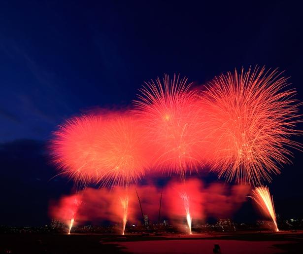 今年も江戸川の夜空を花火が華々しく色付ける(写真は2017年開催時のもの)