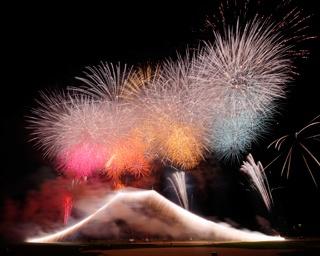 江戸川の夜空に大輪の花が咲く!主催者に聞く「江戸川区花火大会」の見どころ