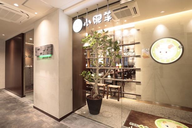 中国火鍋専門店 小肥羊 名古屋駅前店