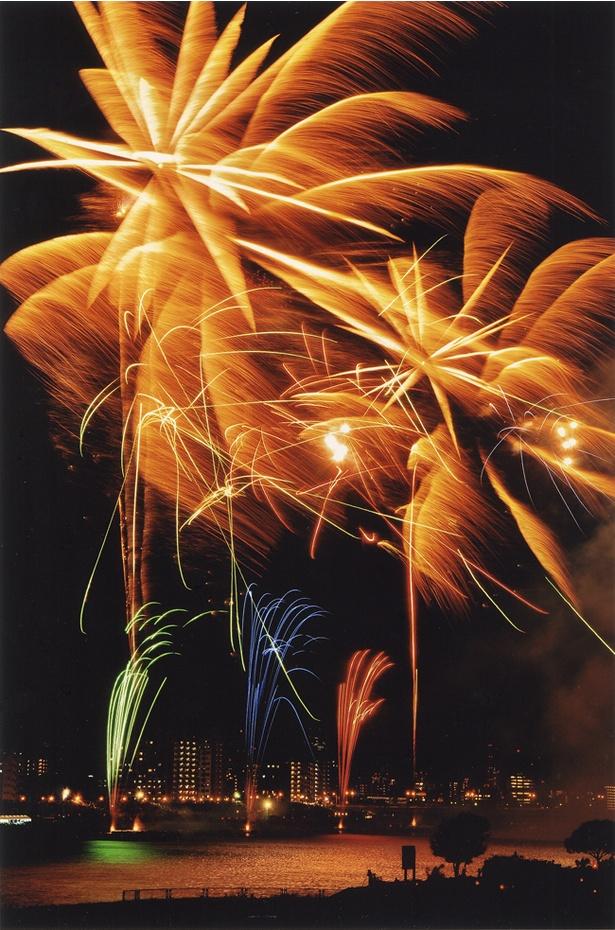 今年は夜空にどんな花火が花開くのか期待も高まる(写真は2017年のもの)