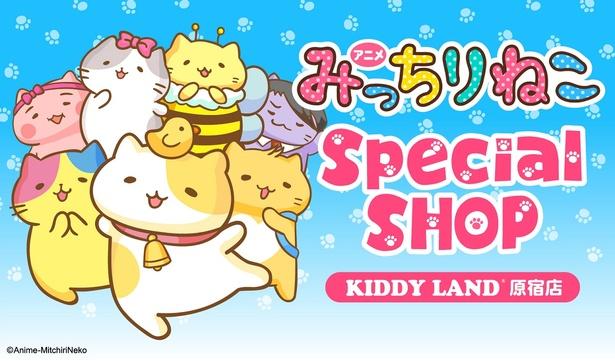 キデイランド原宿店で人気急上昇中「みっちりねこ スペシャルショップ」が開催決定!